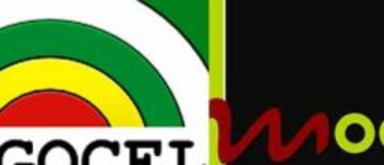 Article : Togotelecom, Togocel, et Moov (Partie I)